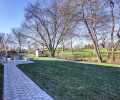 Rear Yard II