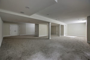 843 Nancy Way - Basement