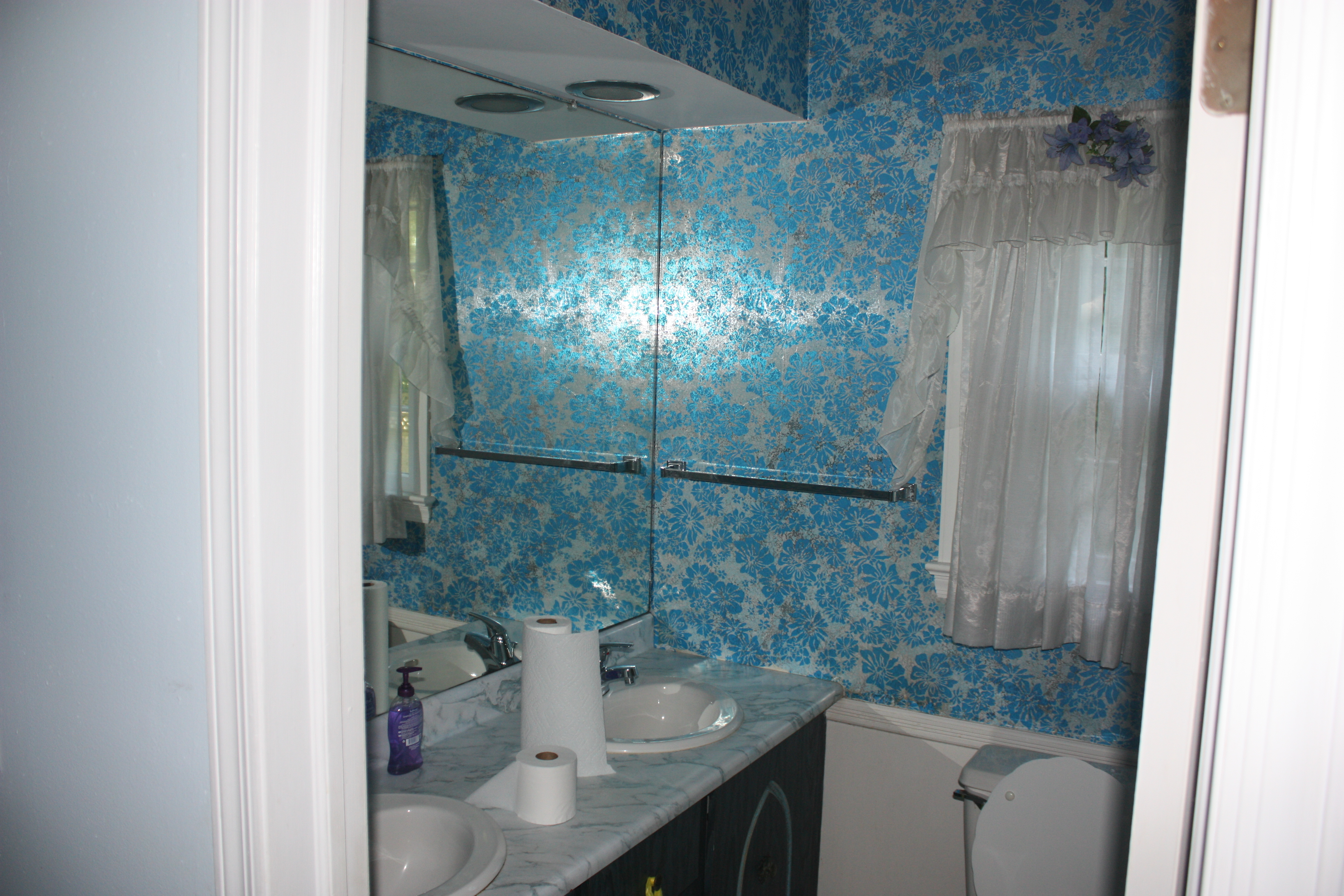 Before – Original Bathroom