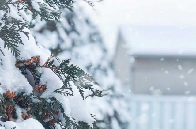 Winter Activities in Westfield, NJ